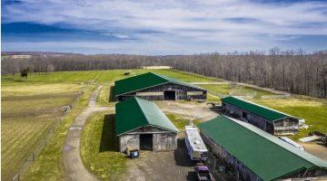 Horse Farm w Panoramic View