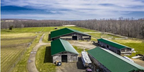 Horse Farm w/Panoramic Views