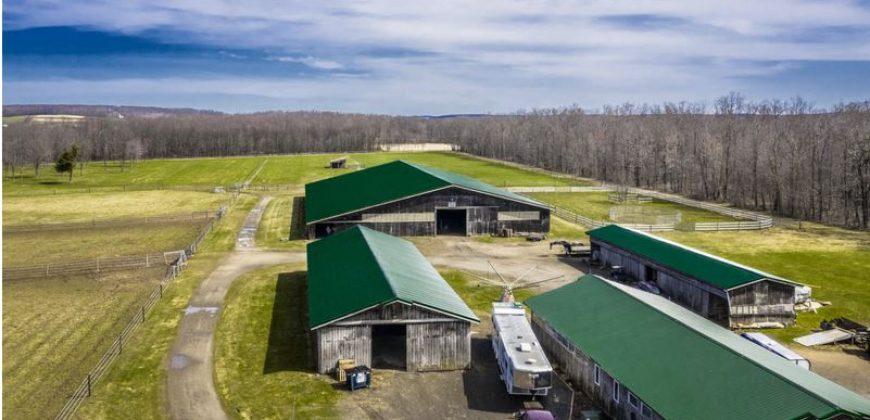 Horse Farm w/Panoramic Views